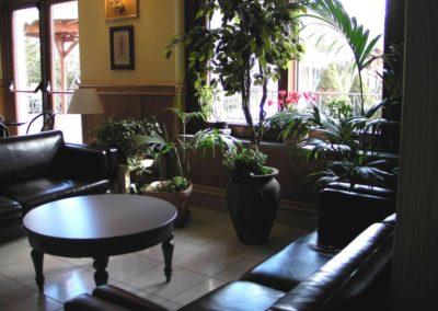hall-piante